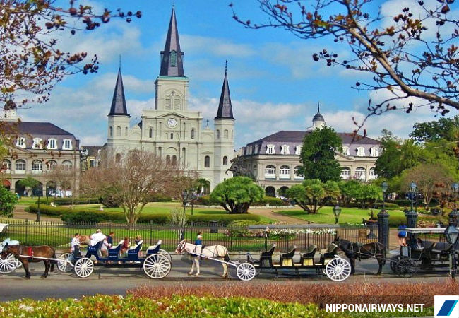 ve may bay di new orleans gia re