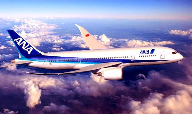 Văn phòng đại diện All Nippon Airways chính thức